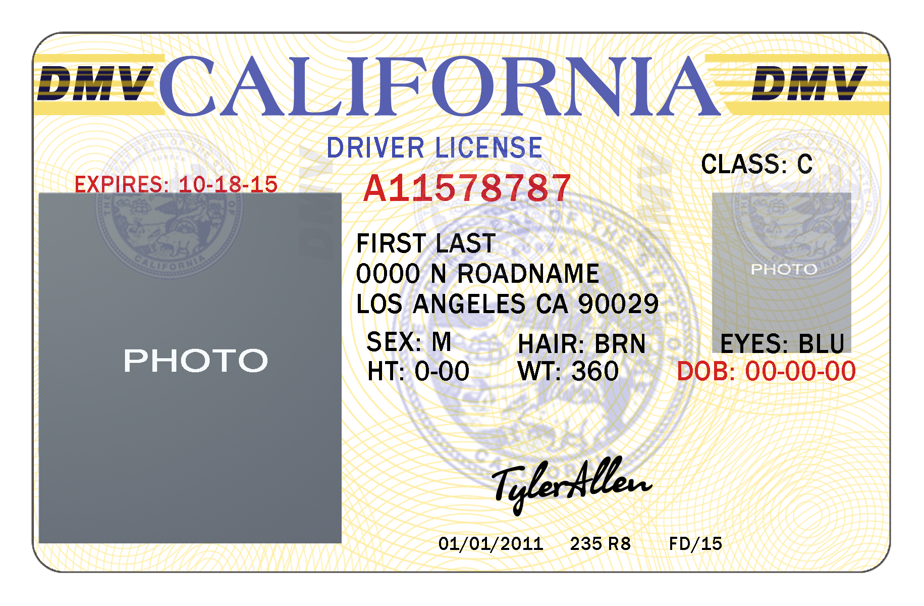 11Ea1 Free Drivers License Template | Wiring Resources With Regard To Blank Drivers License Template