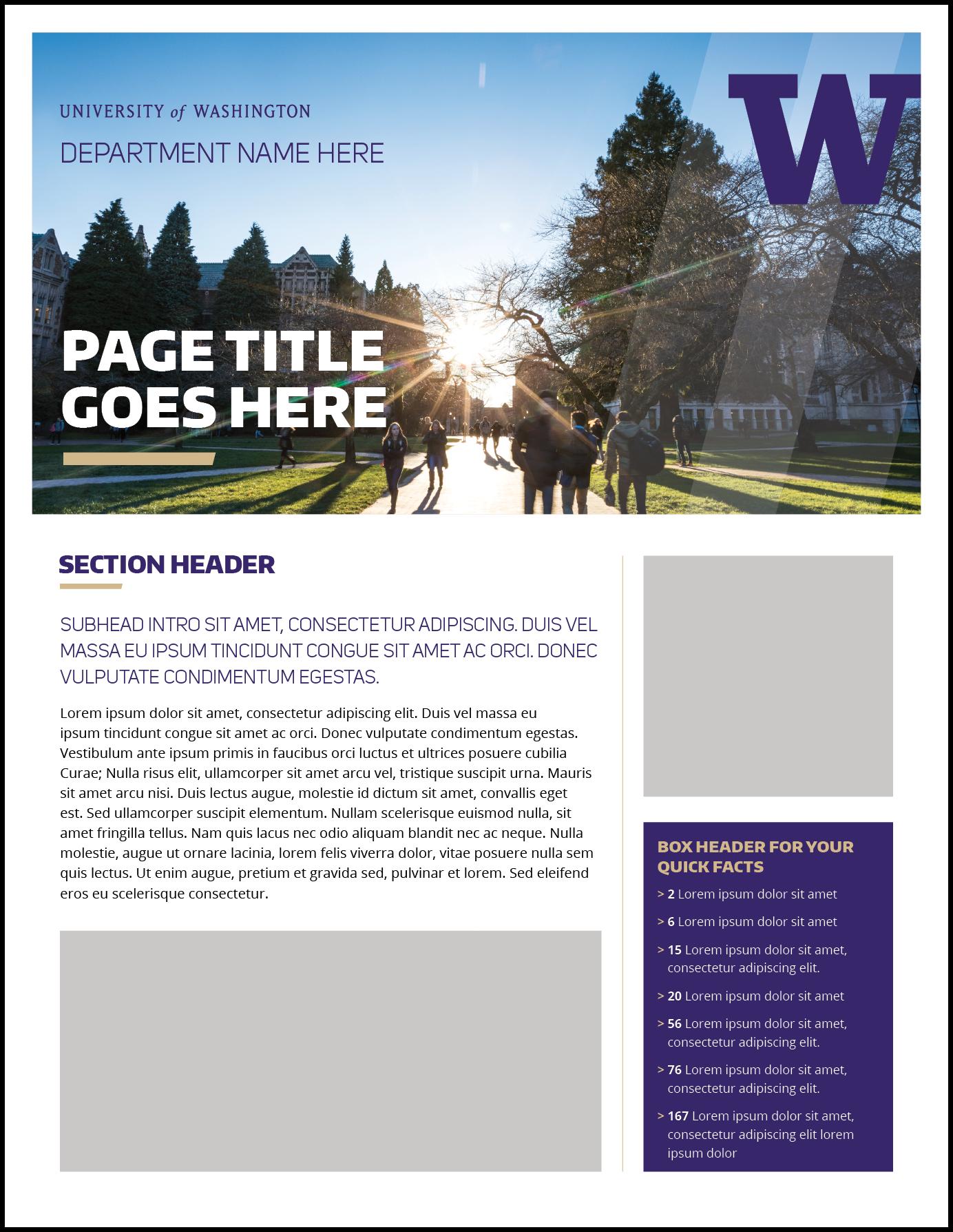 Fact Sheet | Uw Brand In Fact Sheet Template Microsoft Word