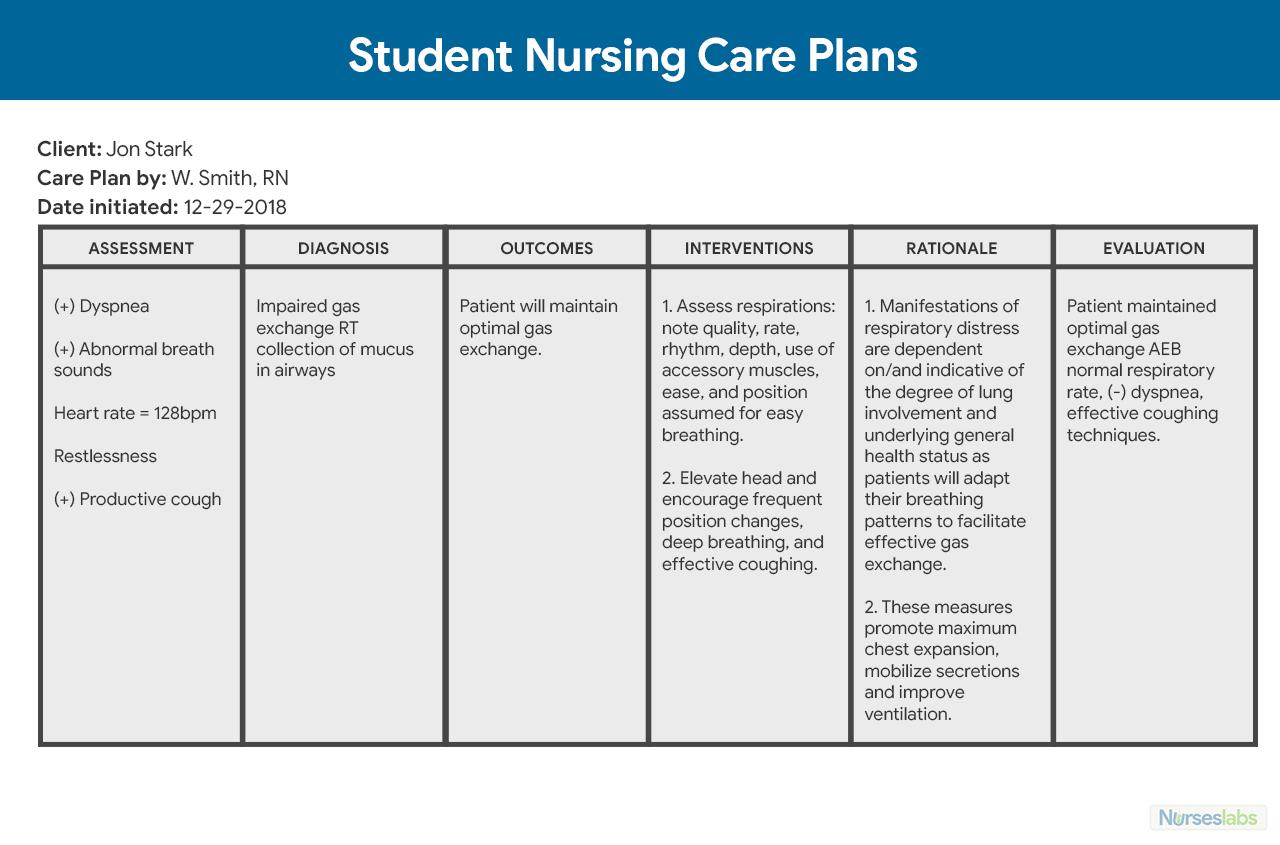 Nursing Care Plan (Ncp): Ultimate Guide And Database Inside Nursing Care Plan Template Word
